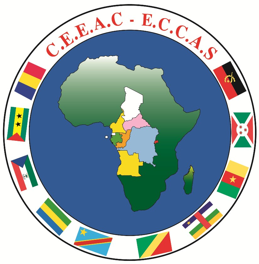 Ministers of Central African countries take decisive step toward green economy, with focus on timber industry thumbnail