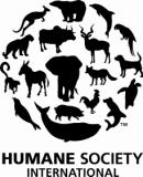 HSI Sends Funds to Sierra Leone Animal Groups Affected by Ebola Outbreak thumbnail