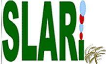 SLARI to reduce farmers yield gaps thumbnail